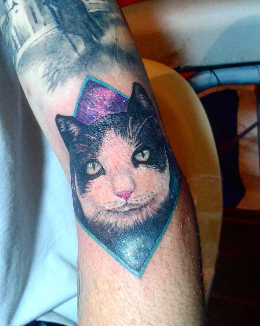 天津双港新家园搞手机游戏的邢先生小臂猫纹身